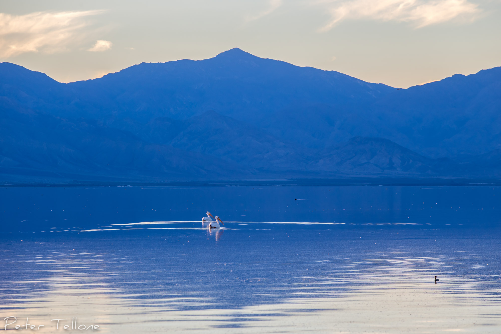 Salton Sea Beauty