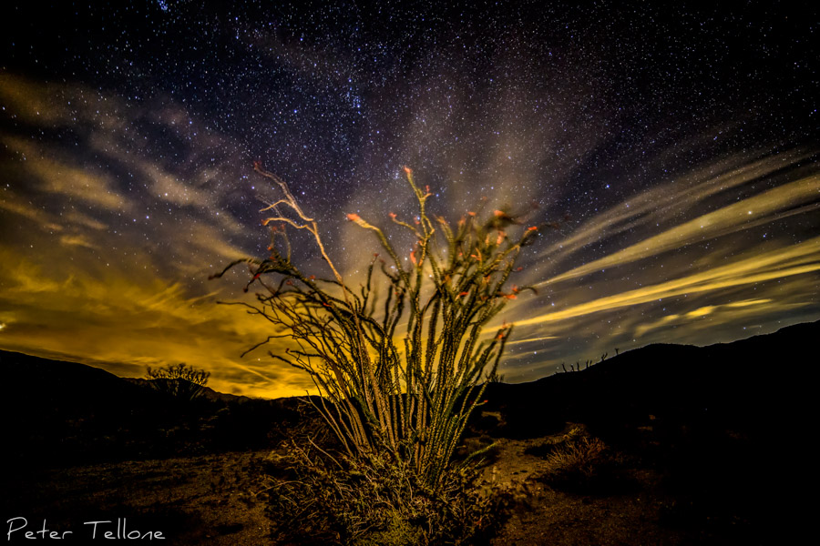 Night Sky Anza Borrego