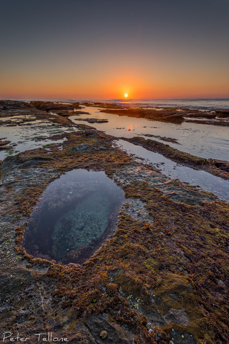 La Jolla Tide Pools