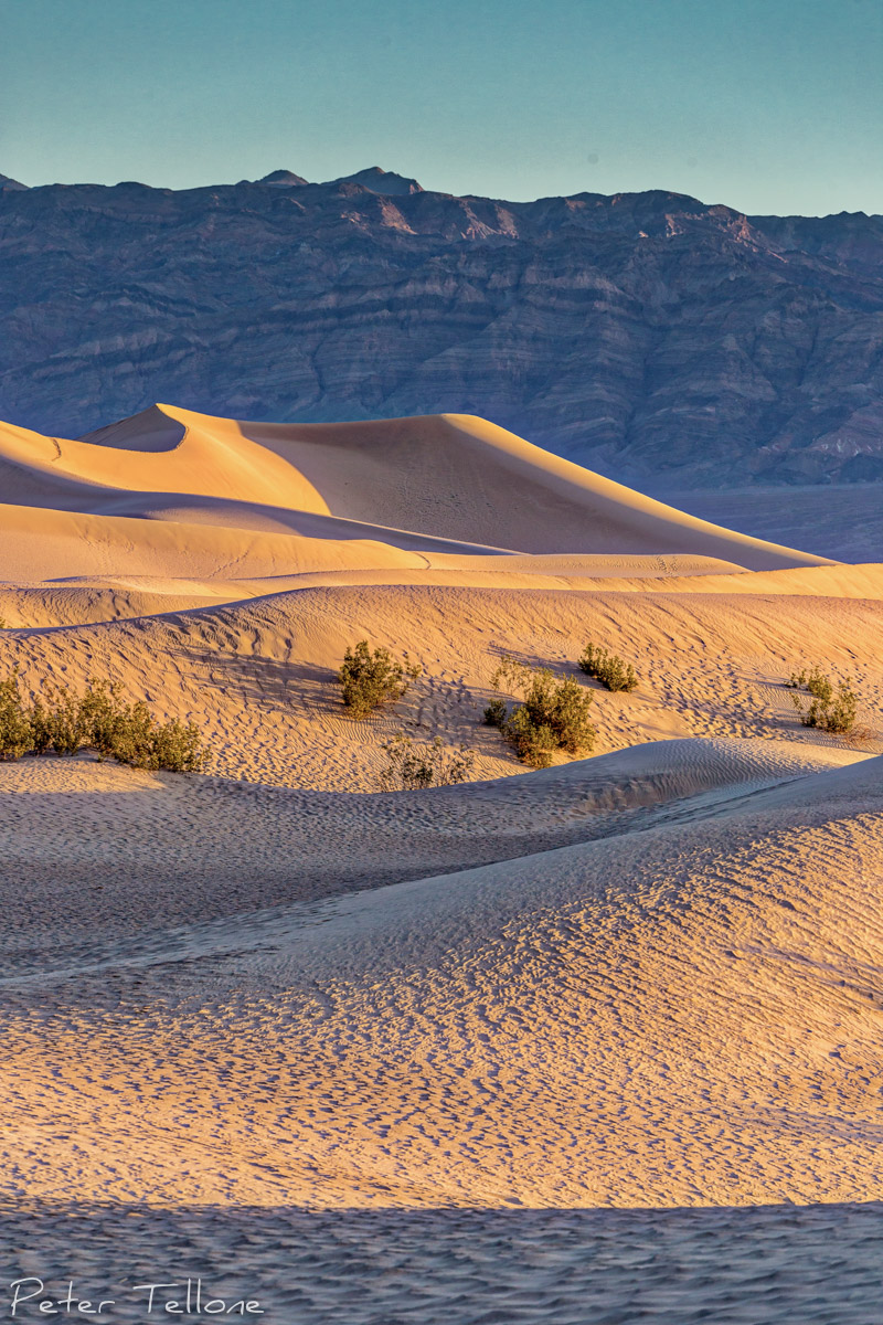 Death Valley 2015