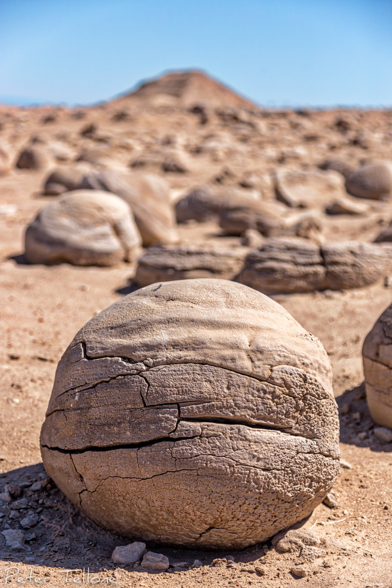 The Pumpkin Patch Concretions