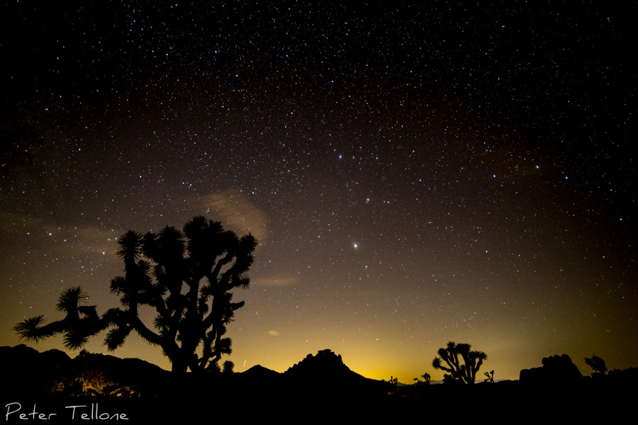 Perseid Meteor Showers Joshua Tree